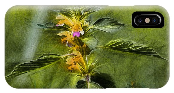 Artistic Paiterly Nettle On Top Yellow Flower With Lilac Skirt Looking Forward IPhone Case
