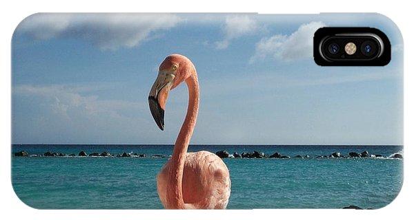 Aruba Hairy Eyeball IPhone Case