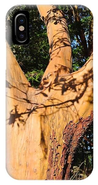Arbutus - Shadows From Above IPhone Case