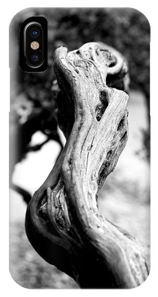 Ascending Branch Phone Case by Luna Curran