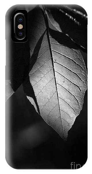 Ash Leaf IPhone Case