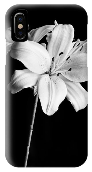 Asian Lilies 2 IPhone Case