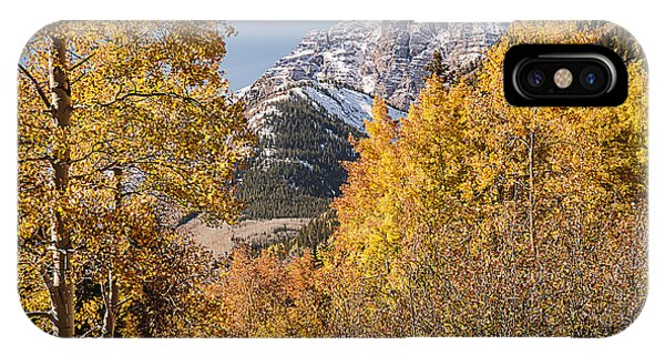 Aspen And Mountains 5 IPhone Case