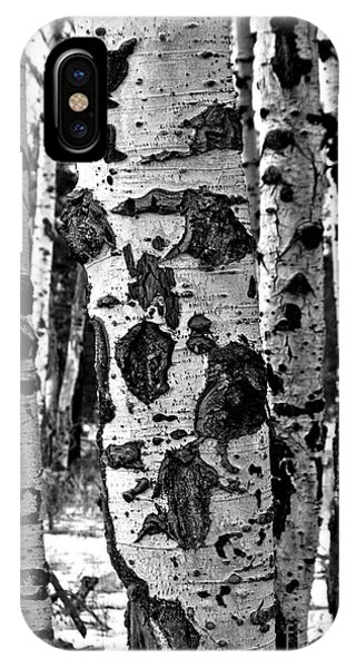 IPhone Case featuring the photograph Aspen Art by Mae Wertz