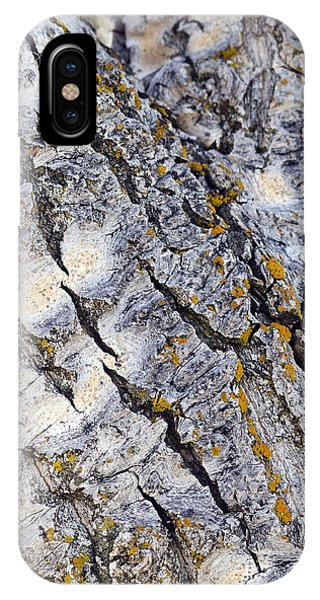 Aspen Bark IPhone Case