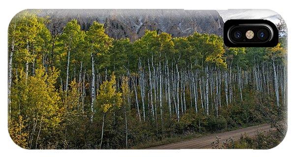 Aspen Forest Along A Colorado Unpaved Road IPhone Case