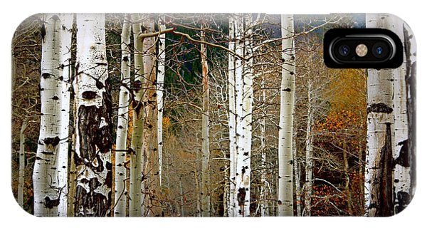 Aspen In The Rockies IPhone Case