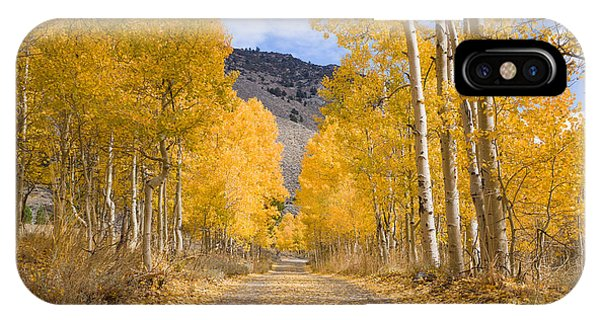 IPhone Case featuring the photograph Aspen Lane Wide Crop by Priya Ghose