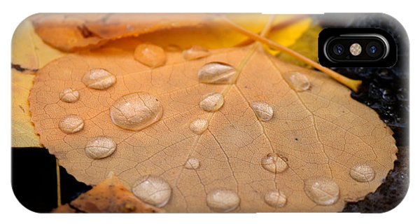 Aspen Leaf With Water Drops IPhone Case