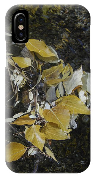Aspen Leaves In Creek Whirlpool IPhone Case