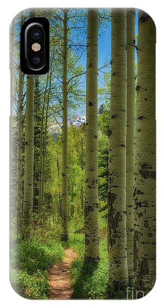 Aspen Lined Hiking Trail Hdr Phone Case by Mitch Johanson