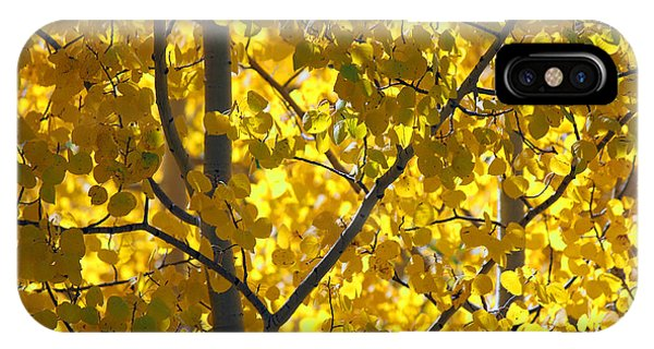 Aspen IPhone Case