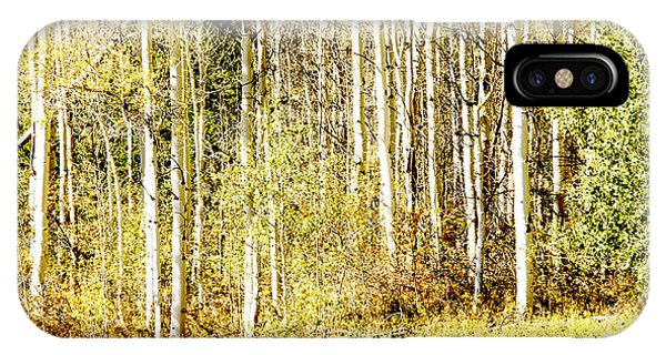 Aspen Sunshine IPhone Case