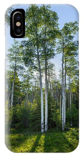 Aspens At Sunrise 1 - Santa Fe New Mexico IPhone Case
