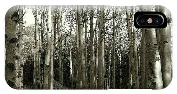 Aspens Black And White IPhone Case