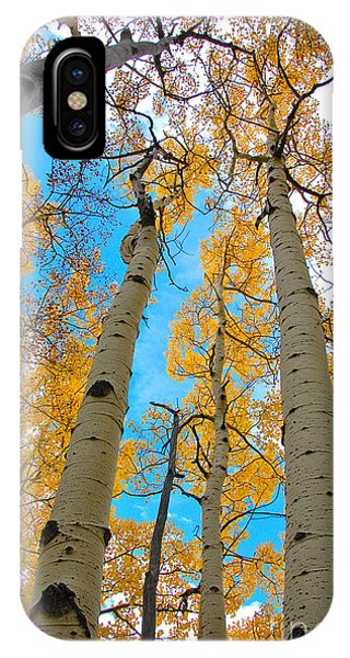 IPhone Case featuring the photograph Aspens by Jeff Loh