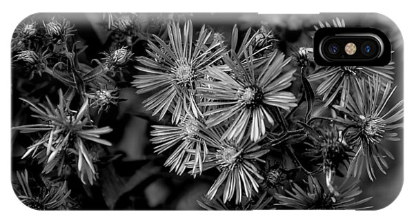 Asters In Monochrome IPhone Case