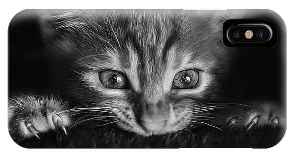 Kitten iPhone Case - At The Movies by Monte Pi (10catsplus)