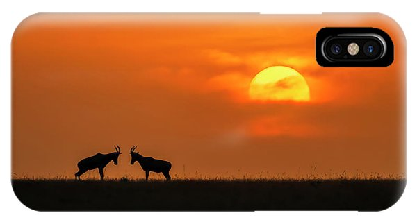 At The Sunset Phone Case by Jun Zuo
