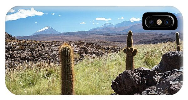 Adapted iPhone Case - Atacama Landscape With Cactus by Peter J. Raymond