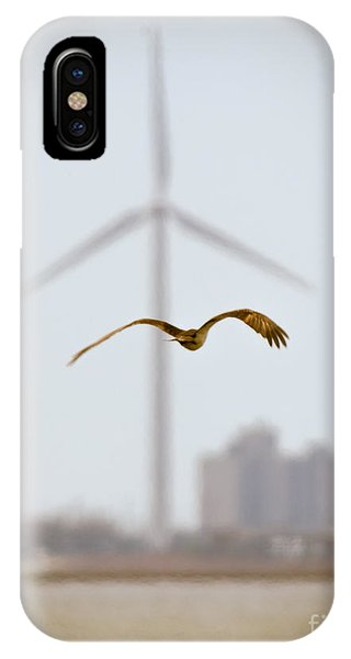 Atlantic City Osprey IPhone Case