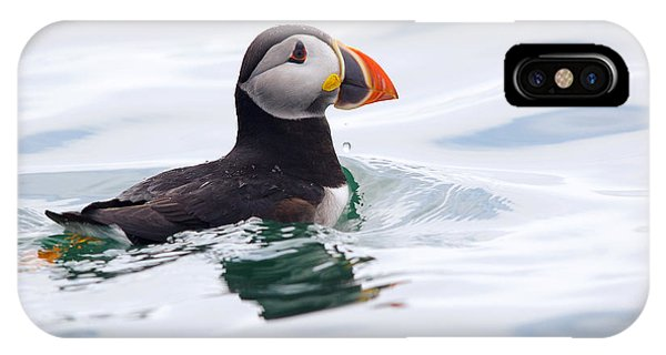 Atlantic Puffin. IPhone Case
