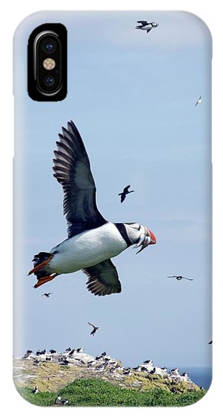 Atlantic Puffin In Flight Phone Case by Steve Allen/science Photo Library
