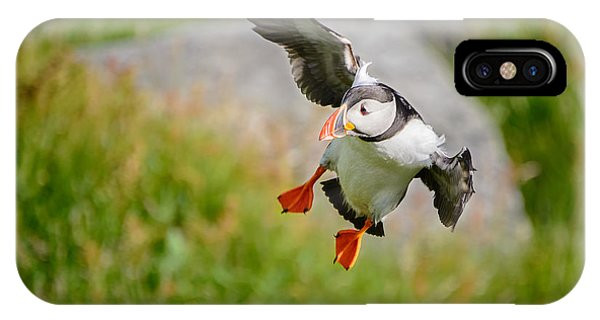 Atlantic Puffin, Incoming.... IPhone Case