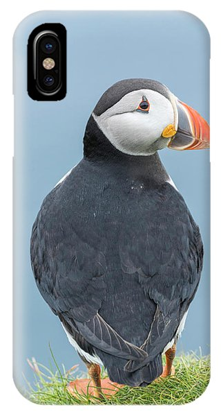 Archipelago iPhone Case - Atlantic Puffin, Mykines, Faroe by Martin Zwick