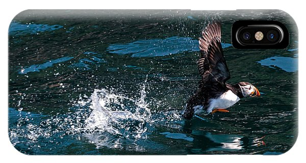 Atlantic Puffin Taking Off IPhone Case