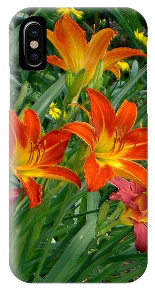 Lilies Galore IPhone Case