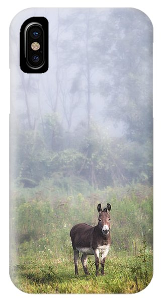 August Morning - Donkey In The Field. IPhone Case
