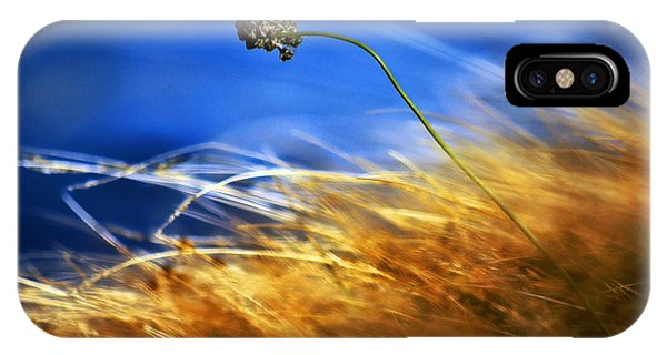 August Rush IPhone Case