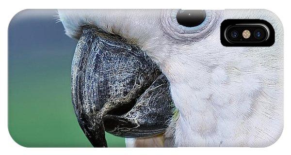 Australian Birds - Cockatoo Up Close IPhone Case