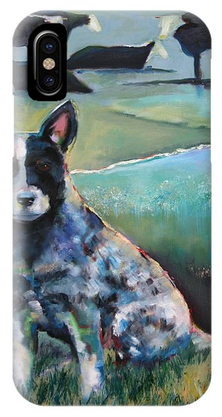 Australian Cattle Dog With Coat Of Many Colors IPhone Case