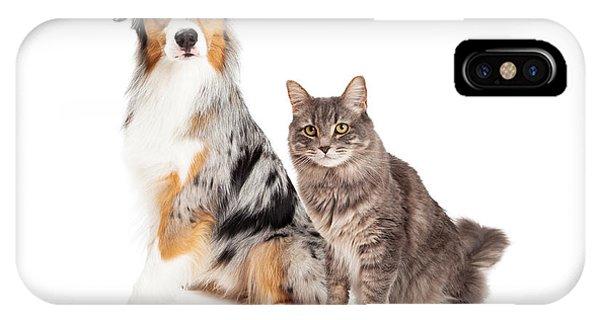 Australian Shepherd Dog And Tabby Cat IPhone Case