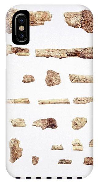 Australopithecus Skeleton Fragments Phone Case by John Reader/science Photo Library