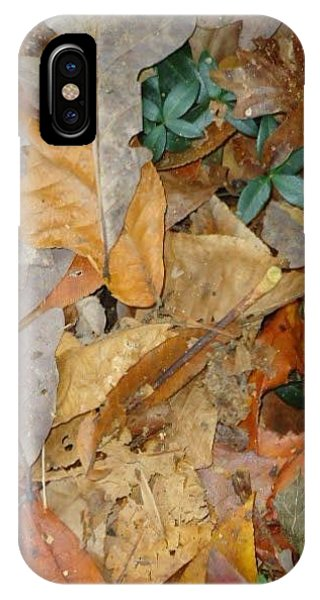 Autum Leaves Phone Case by Glenn Calloway