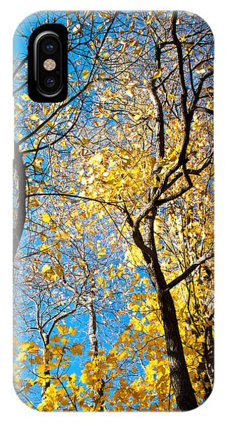 Autumn Abstract Phone Case by Jeanne Sheridan