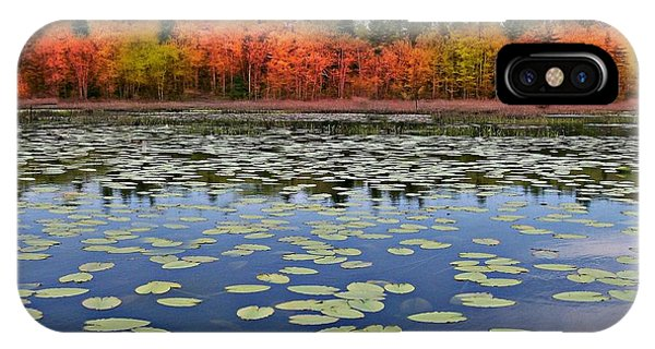 Autumn Across The Pond IPhone Case