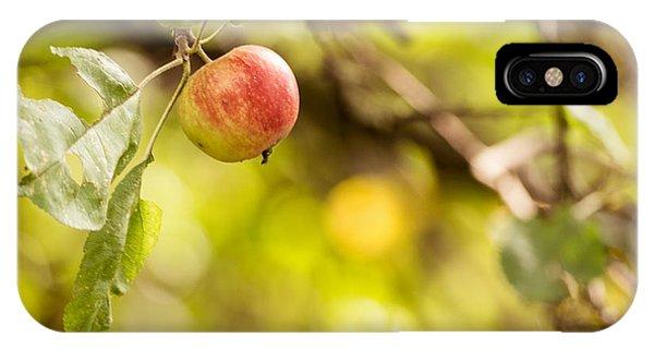 Autumn Apple IPhone Case