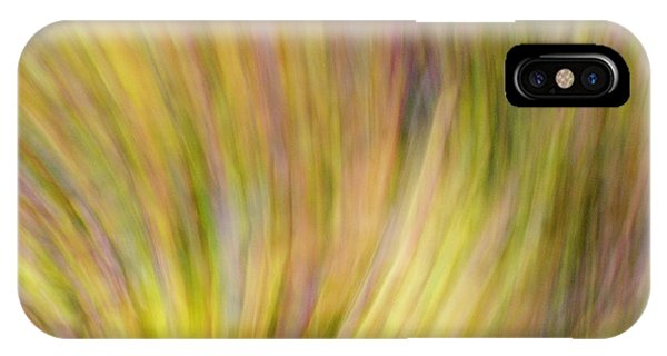 Autumn Azaleas 4 IPhone Case