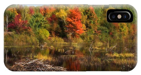 Treeline iPhone Case - Autumn Beaver Pond Reflections by Georgia Mizuleva