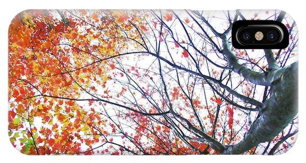Autumn Bleeds IPhone Case