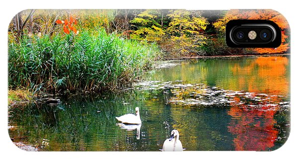 Autumn By The Swan Lake IPhone Case