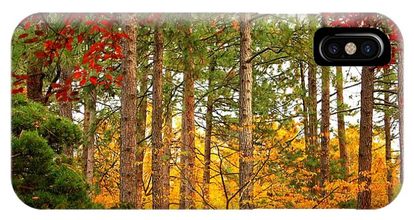 Autumn Canvas IPhone Case