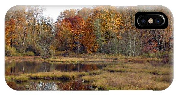 Autumn Changes  IPhone Case