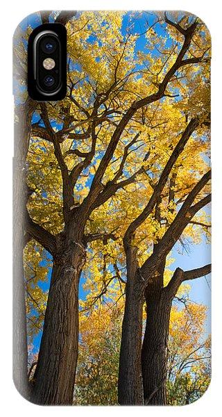 Autumn Color Phone Case by Allen Lefever