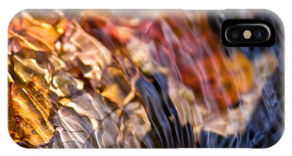 Autumn Color Beneath The Surface IPhone Case