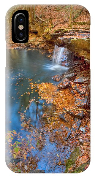Autumn Color In Pond IPhone Case